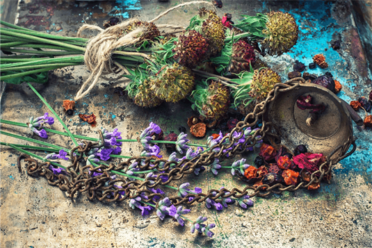 Žolinės - tradicijos, istorija ir renginiai šią dieną