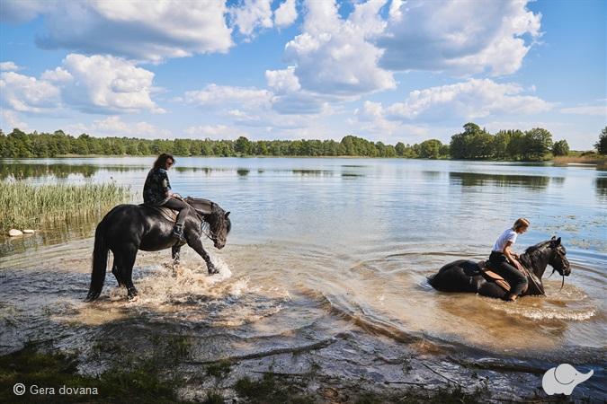 Maudynės su žirgu ežere