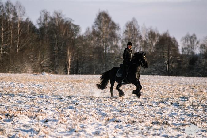 Žygis žirgais ir ąžuolo sodinimas