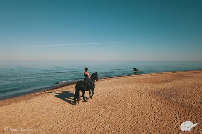 Žygis žirgais: Kalniaus sodyba–Baltijos jūra