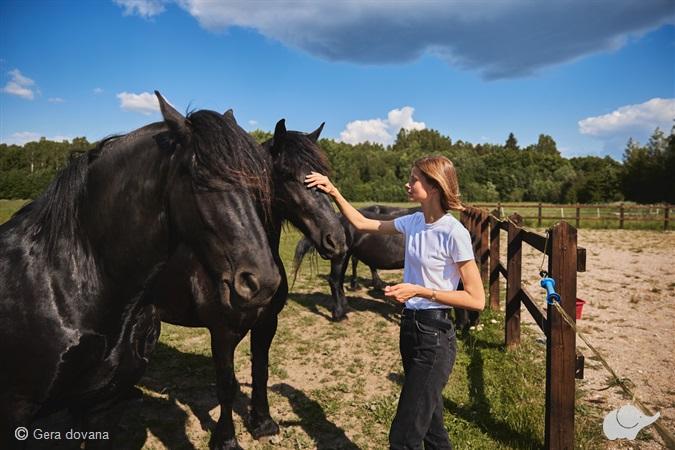 Pažintis su žirgu šeimai