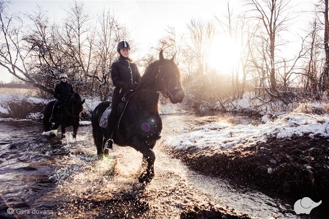 Žygis žirgais iki Pelėdų sodybos